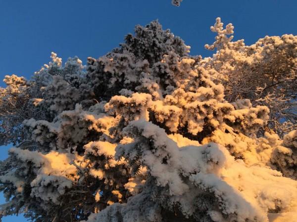 talvipäivät2
